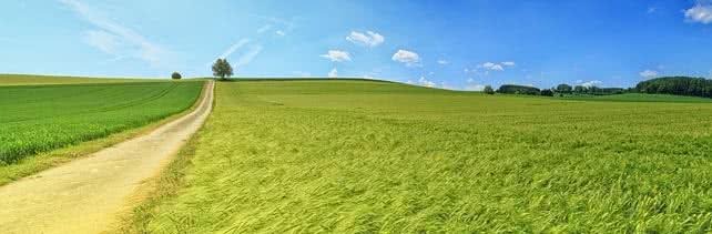 adattamento-dell-agricoltura-ai-cambiamenti-climatici